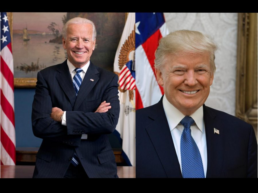 Biden and Trump in their respective government photos.