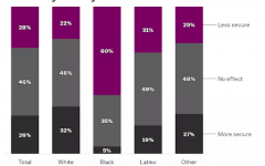 A comparison of the reported fear of interacting with a police officer of members of different races