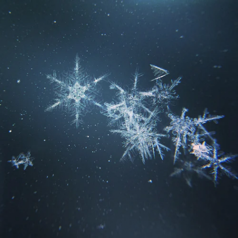 Each snowflake is made up of different features because the water freezes in different structures, making no two flakes alike. Photo taken by Marc Newberry from Unsplash.