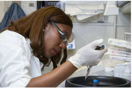 Minority in the STEM field.