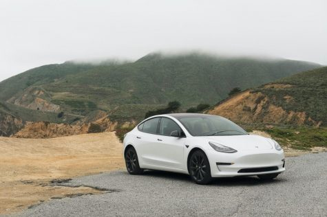 A white Tesla sedan parked on the road.